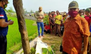 Istirahat Usai Tanam Sulam Padi, Buruh Tani di Jombang Meninggal