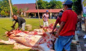 Polres Jombang Berkurban 33 Ekor Hewan Kurban Iduladha 2020
