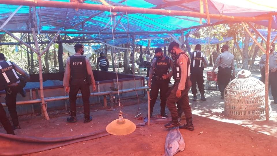 Judi Sabung di Jombang Digerebek Polisi, 2 Ekor Ayam Diamankan