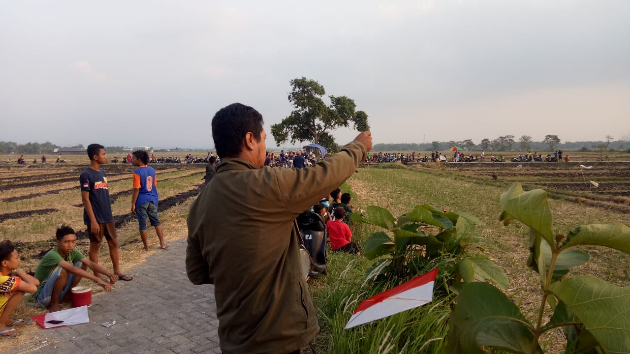 Meriahkan HUT RI ke 75, 100 Orang Beradu Layang di Sumobito Jombang