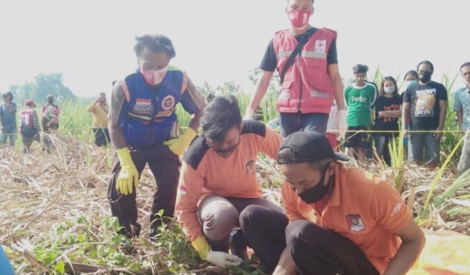 Geger, Mayat Tinggal Tulang Ditemukan di Kebun Tebu Mojokerto