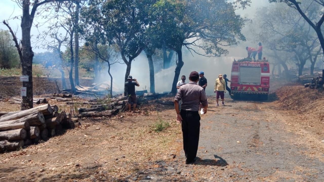 Warung Dan Ratusan Batang Kayu di TPK Nglirang Nganjuk Terbakar