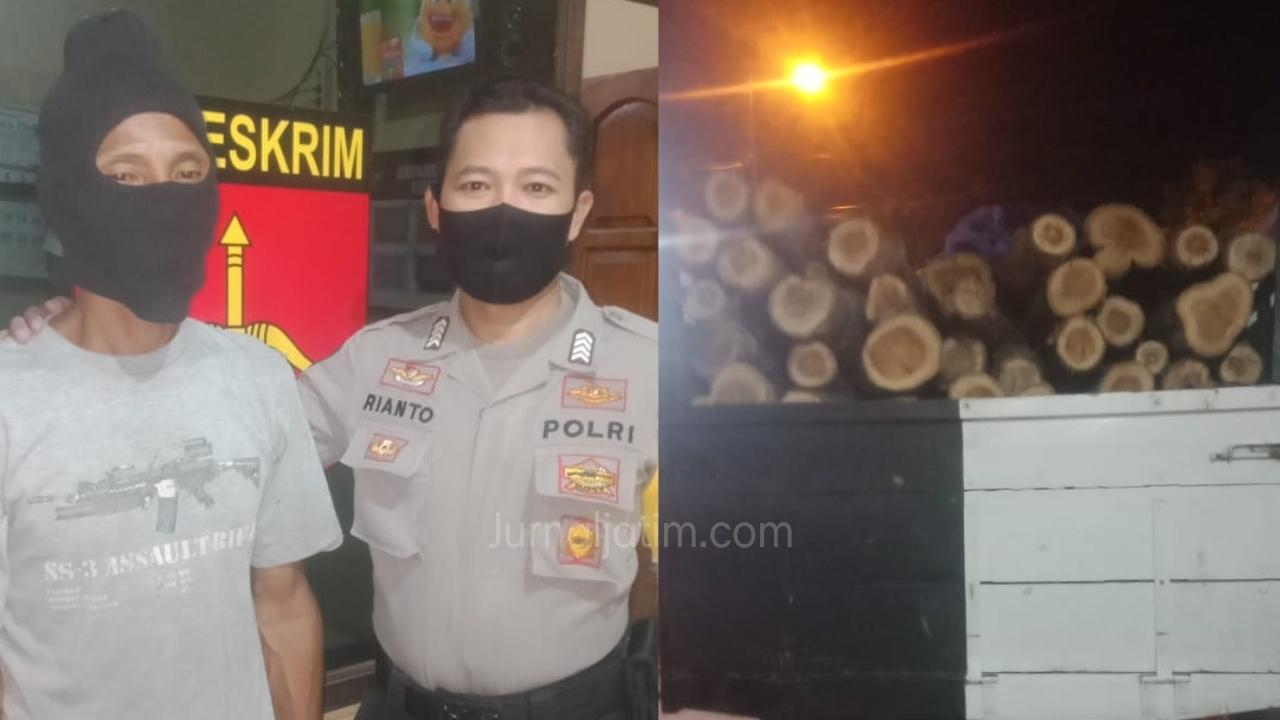 Sopir Truk Pengangkut Kayu Ilegal Ditangkap Polisi di Kabuh Jombang