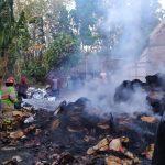 Dua Unit Mobil Pemadam Padamkan Api Tumpukan Kantong Semen di Jombang