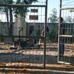 Ditangkap, Pencuri Baterai Tower di Mojokerto Juga Beraksi di Sidoarjo
